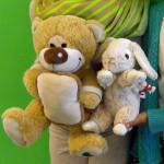 Teddy und Hase